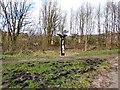 SJ9694 : Sustrans Milepost at Godley by Gerald England