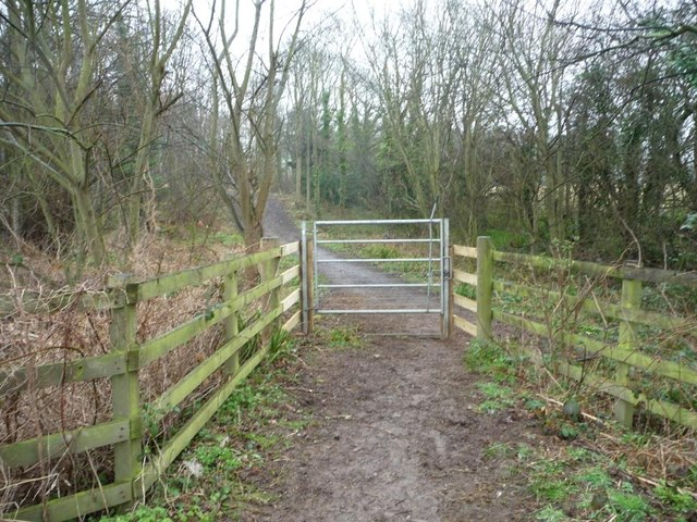 Permissive bridleway, west side of Yearby Bank