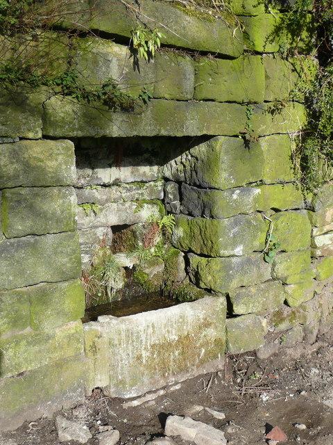 Stone trough at Bloomergate
