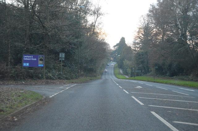 B2195, Leechpool Wood