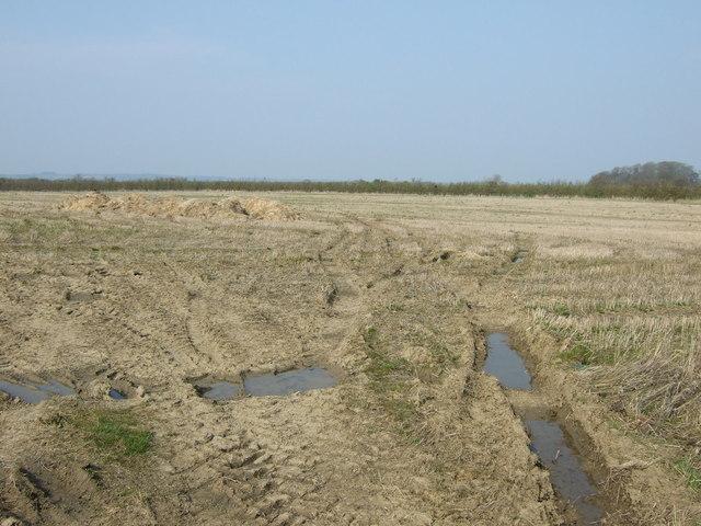Farmland near Glororum