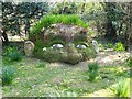 SW9946 : The Giant's Head - Lost Gardens of Heligan by Anthony Parkes