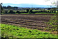 SO8468 : Field beside the A449 at Hartlebury by David Martin