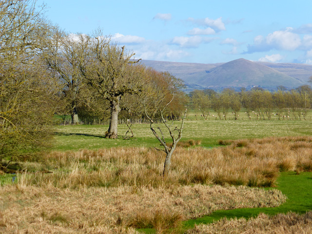 Pasture, Bolton