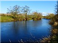 NY6125 : River Eden, Bolton by Andrew Smith