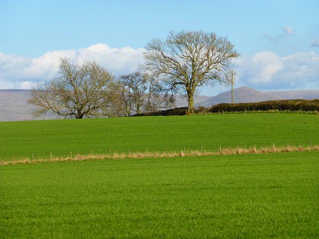 Farmland, Bolton