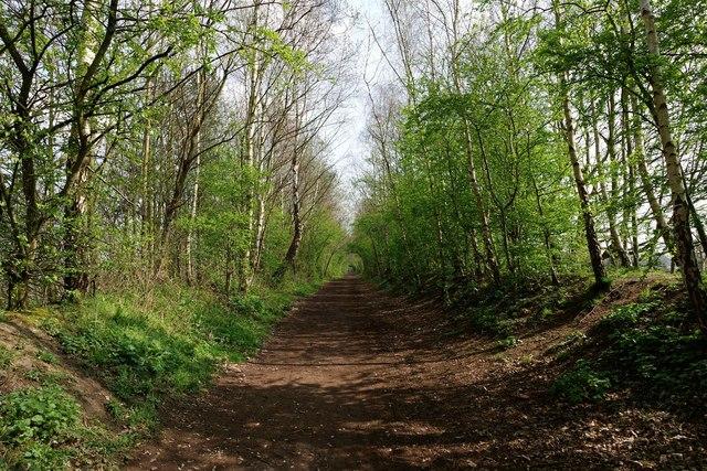 Trans-Pennine Trail at Lymm, Cheshire