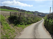 SY2197 : Road along the valley side to Stockers Farm by David Smith