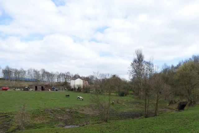 Grazing land off Station Road, Godley