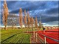 NZ3014 : Athletics Track, Eastbourne Leisure Centre by Mick Garratt