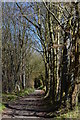 SU7989 : Footpath, Parmoor, Buckinghamshire by Oswald Bertram