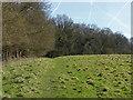 TQ0850 : Field edge near West Horsley by Alan Hunt