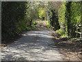 TQ0850 : Shere Road by Alan Hunt