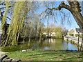 SP2032 : Duck Pond, Parkers Lane by Paul Gillett