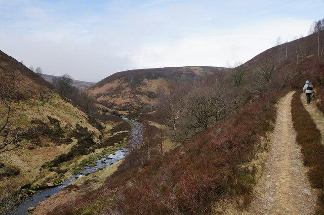 On a path by Oaken Bank
