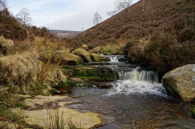Stream in Coldwell Clough