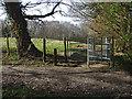 TQ0850 : Footpath to Daws Dene by Alan Hunt