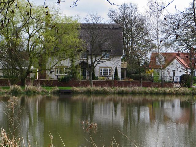 Village pond, Wootton, North Lincs