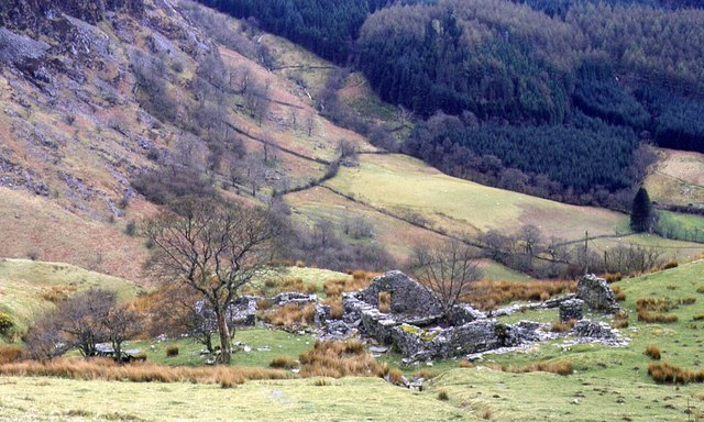 The Ruins of Hafod-Offeiriad by Chris Andrews