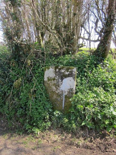 Boundary stone near Felldownhead