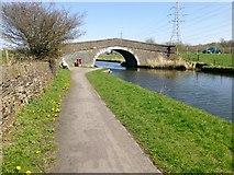 SD7130 : Cut Bridge No 107 by Rude Health