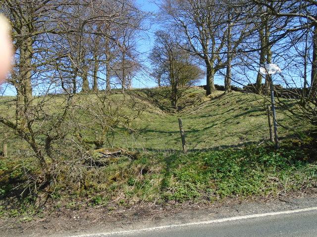 Bunker's Hill