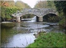 J3731 : The New Bridge viewed from Tipperary Lane by Eric Jones