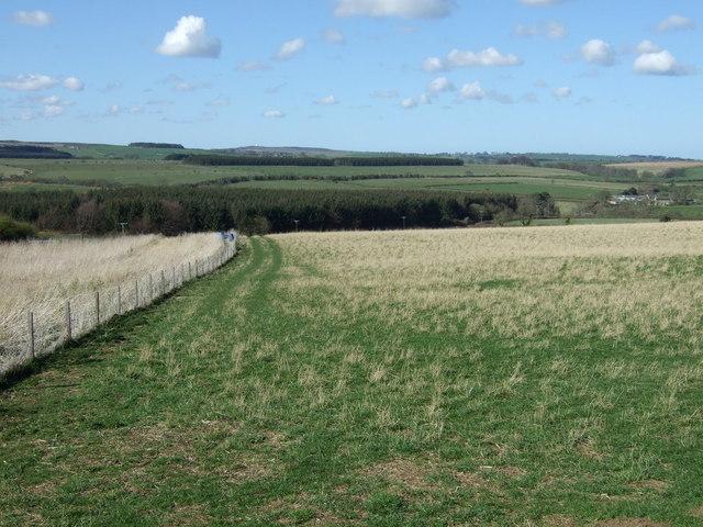 Farmland near Newton on the Moor