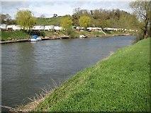 SO8346 : Caravan park beside the River Severn by Philip Halling