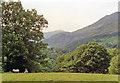 SH5945 : Slopes of Moel Hebog (2,566 ft.) and Moel Ddu, near Aberglaslyn, 1992 by Ben Brooksbank