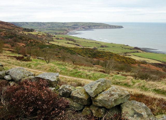 Ravenscar Views