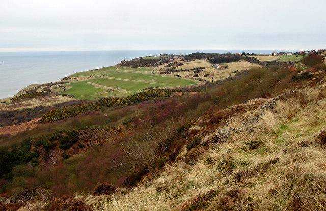 Moorland meets Golf Course