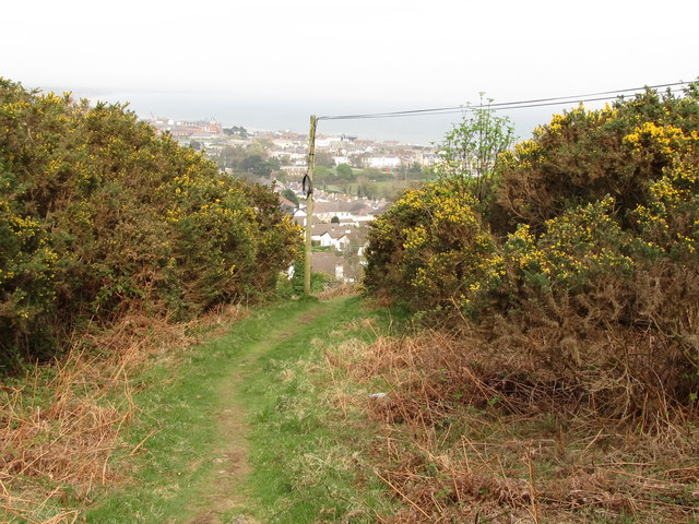Private path leading to the Tallybrannigan area of Newcastle