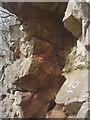 SD4876 : Paleokarst surface, Trowbarrow LNR by Karl and Ali