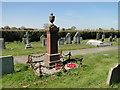 TG4004 : Freethorpe War Memorial by Adrian S Pye
