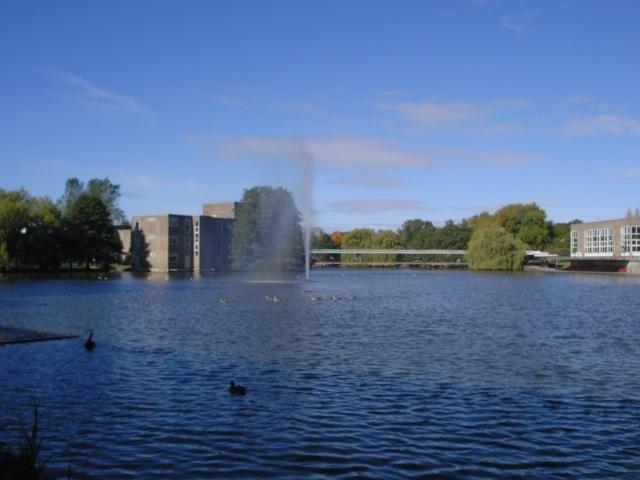 Fountain near Goodricke