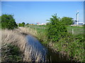 TQ4980 : Dyke on Erith Marshes by Marathon