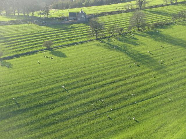 Pastures near Ilam