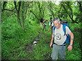 SM8832 : Llwybr Ceffyl Cwnc yr Haidd Bridleway by Alan Richards