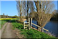 SJ6175 : Remains of field boundary beside the River Weaver by David Martin