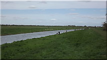 TL4279 : The New Bedford River at Sutton Gault by John Welford