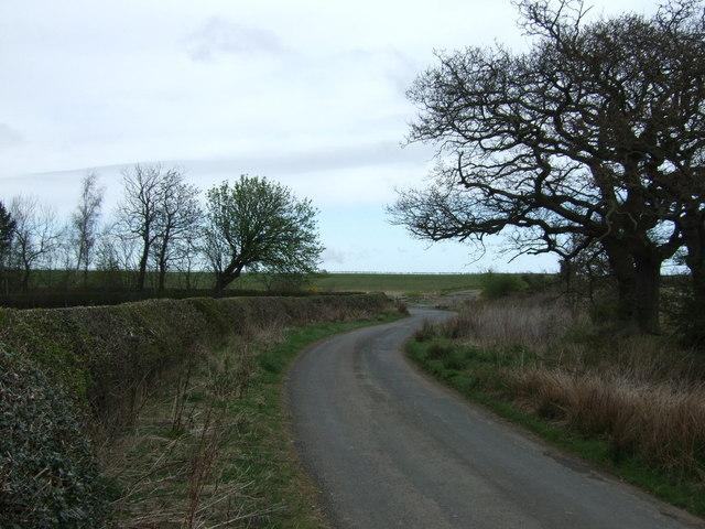Twisty road to Ulgham Park
