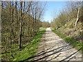 SK0697 : Longdendale Trail by Steve  Fareham