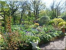 TQ4476 : In the organically run garden at Woodlands Farm by Marathon
