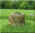 SP7702 : Bledlow - Remains of Cross in churchyard by Rob Farrow
