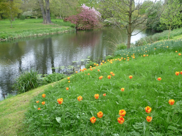 In the gardens at Syon House