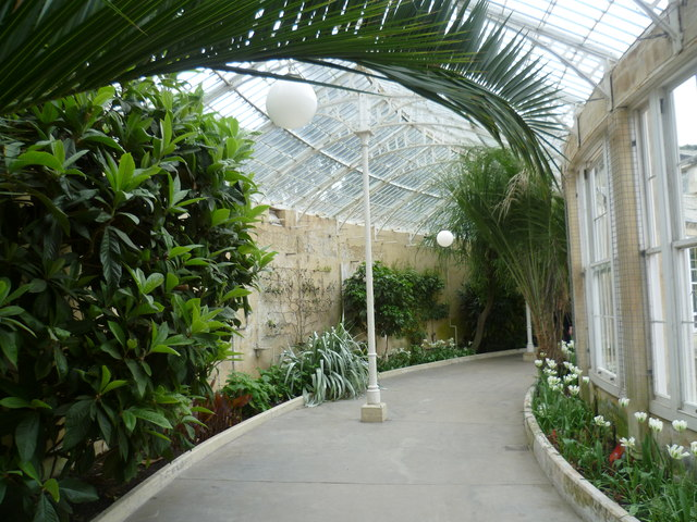 Inside the Great Conservatory at Syon House