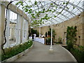 TQ1776 : Inside the Great Conservatory at Syon House by Marathon