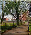 SK5837 : West Bridgford Park: tennis and evening light by John Sutton