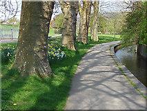 TQ1649 : The Pipp Brook, Dorking by Alan Hunt